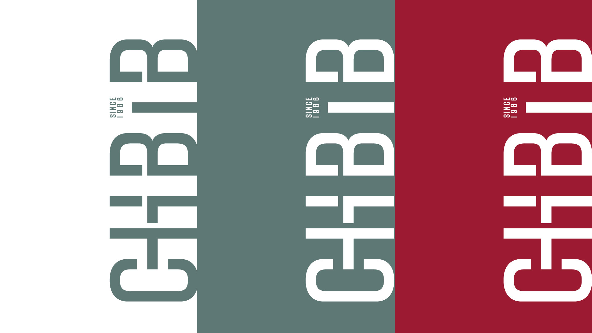 Chbib-Digital-Brandkit-03